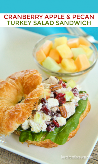 Cranberry-Apple-And-Pecan-Turkey-Salad-Sandwich Love from the overn