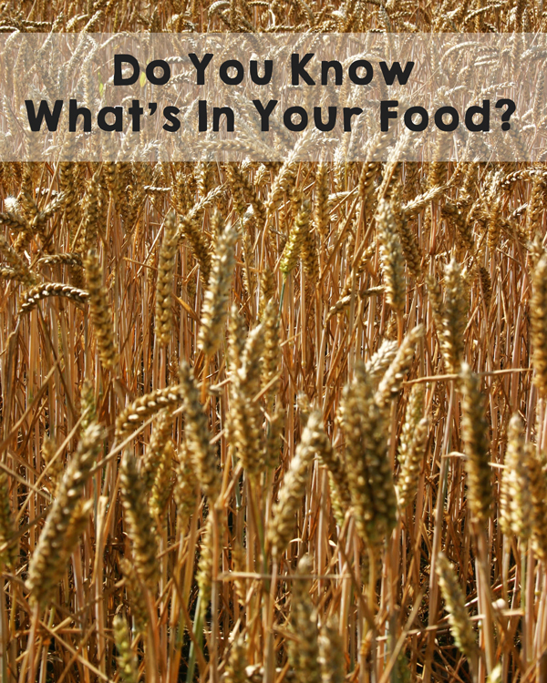 Do you know what's in your food? Learn from farmers about making sure your food has only the BEST and healthiest ingredients. #FarmersSpeak #organic