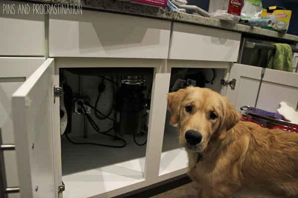 Kitchen Sink Cabinet Organization