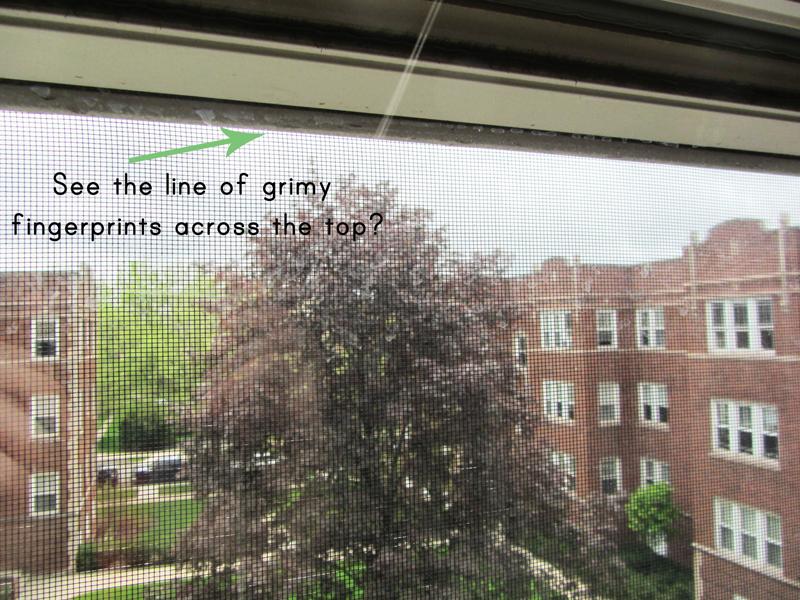 Homemade green window cleaner
